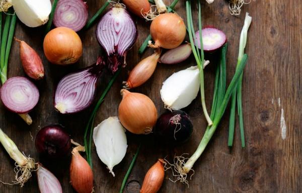 Diferentes variedades de cebollas
