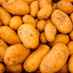 mejores patatas para hostelería