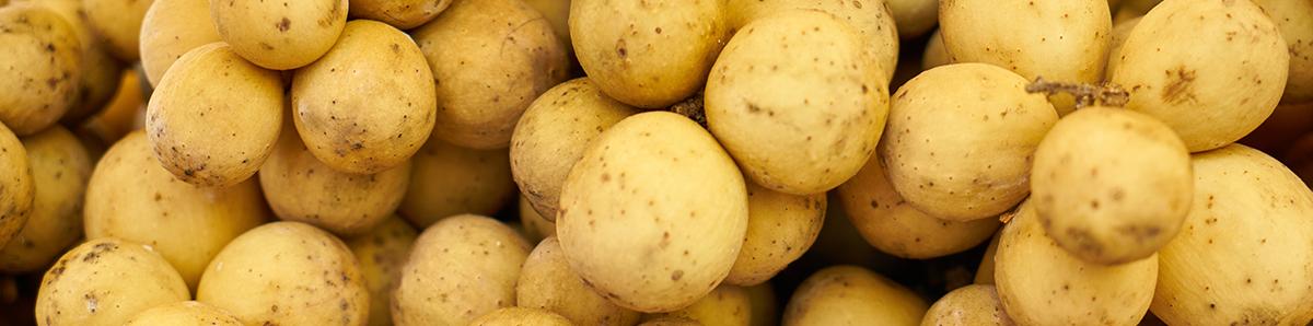 distribución y venta de patatas en Madrid