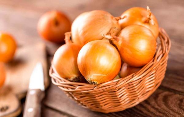 propiedades curativas de la cebolla